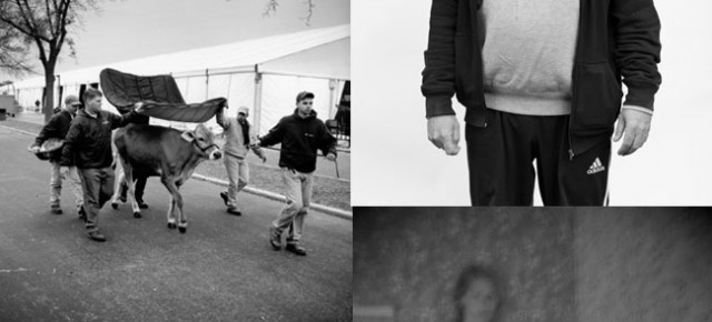 Eight new photographers selected for NJP