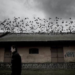 NJP-fotografer vinner pris i Årets Bilde
